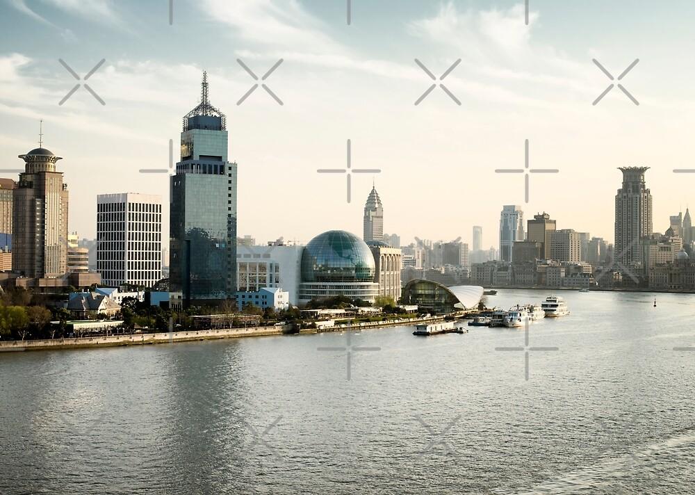 Shanghai skyline on the Huangpu River, China by dani3315