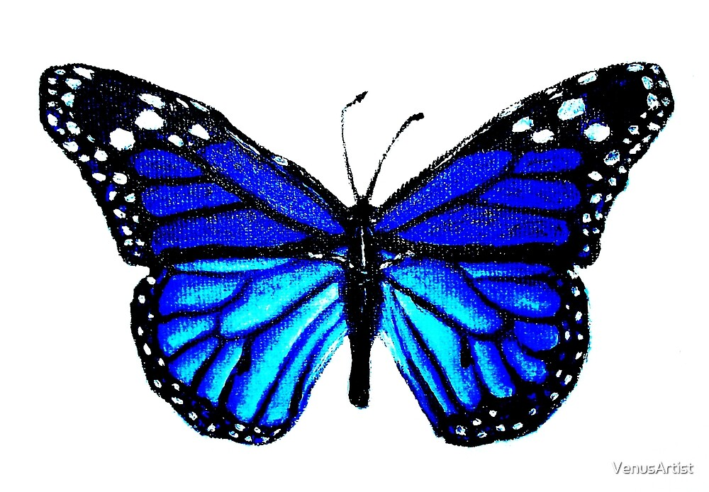 Blue Butterfly by VenusArtist