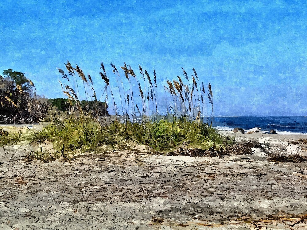 Sea Oats And South Carolina Coastline 1 - Artistic by jtrommer