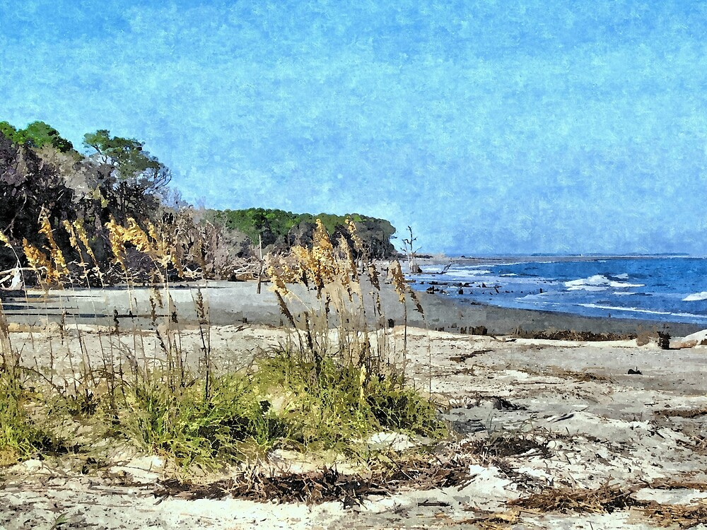 South Carolina Coastline 2 - Artistic by jtrommer
