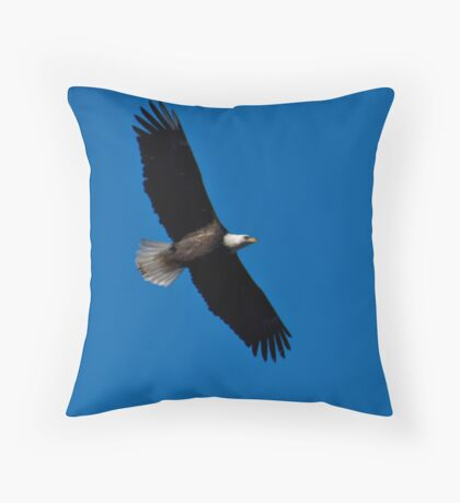 soaring above Throw Pillow