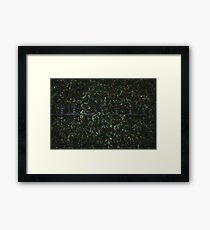 Embraced By The Leaves Framed Print
