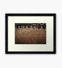 Reeds In The Wind Framed Print