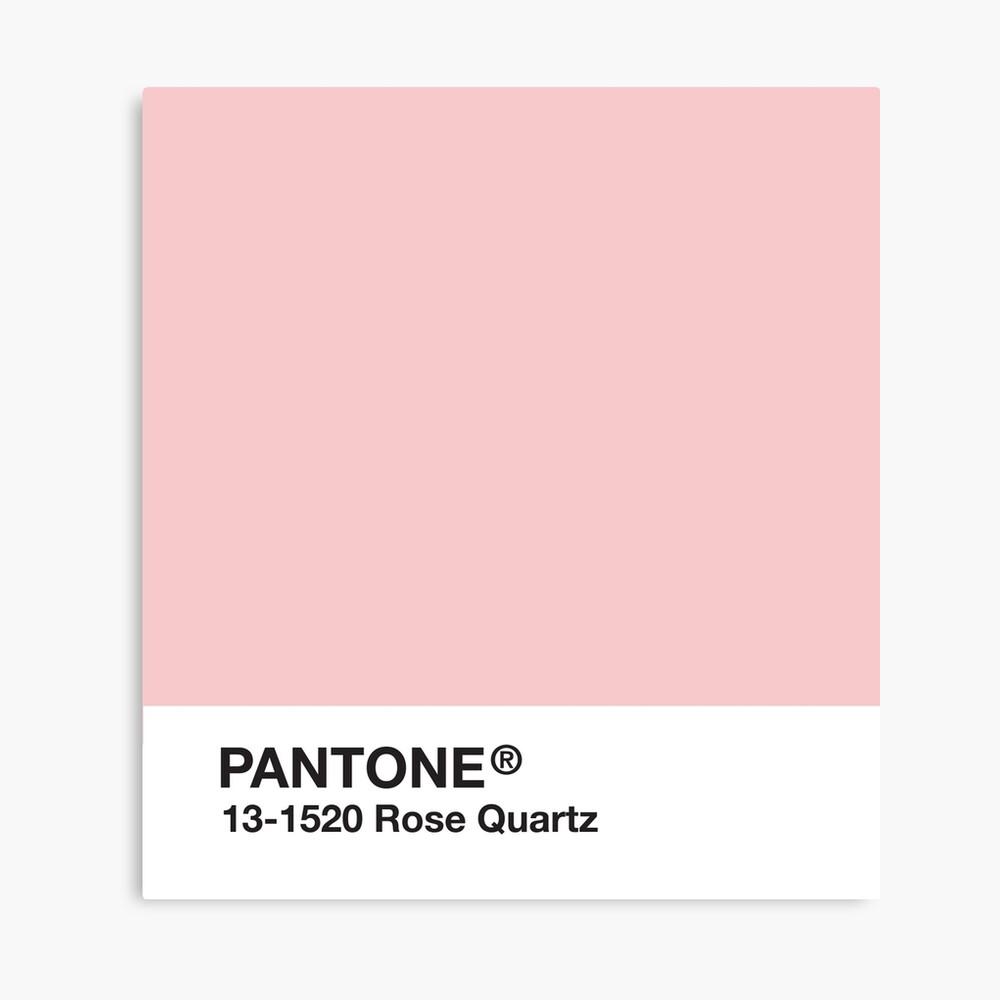 Pantone Serie und Tumblr Vibes - Rosenquarz AKA Millennial Pink Leinwanddruck
