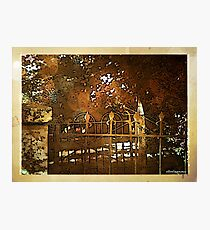 Iron Fence Photographic Print