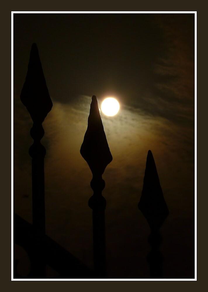 Moon by Sara Capparotto