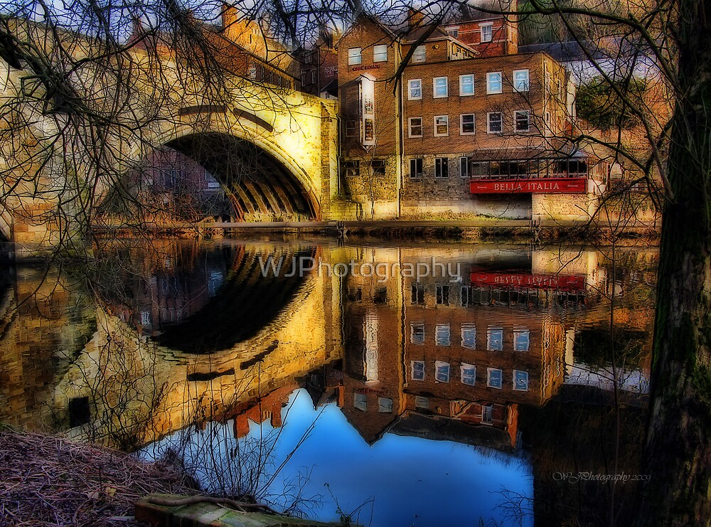 Reflections of Life~ by WJPhotography