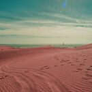 Pink dunes of Maspalomas  by Rob Hawkins