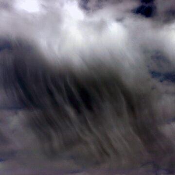 SEE THE RAIN by SMOKEYDOGSOCKS