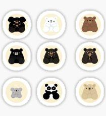 Types of bears Sticker