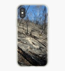 Inheritance iPhone Case