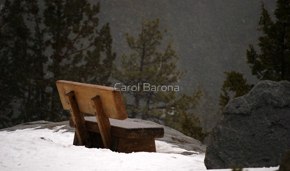 A Chilly View by Carol Barona