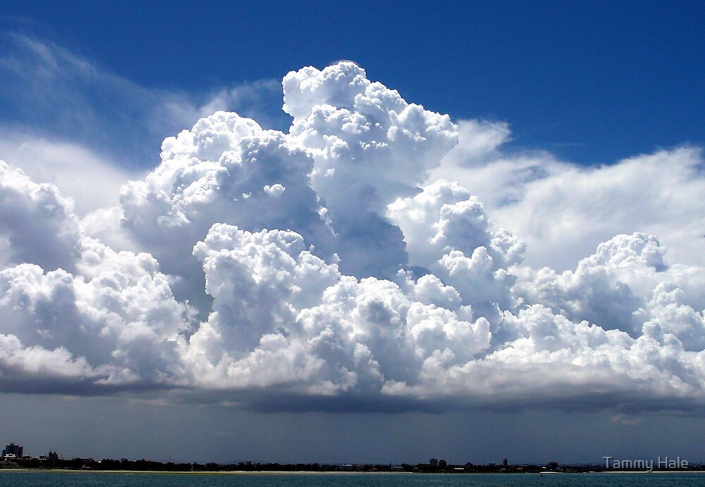 Cloud Formation by Tammy Hale