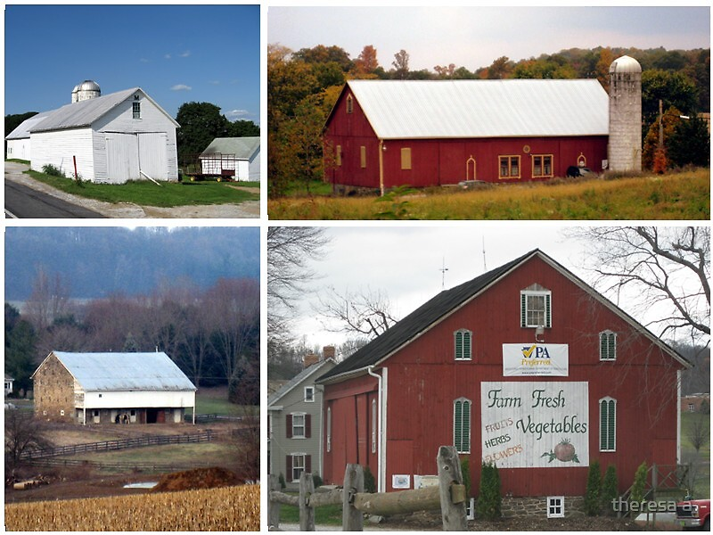 A COLLAGE OF BARNS by theresa a