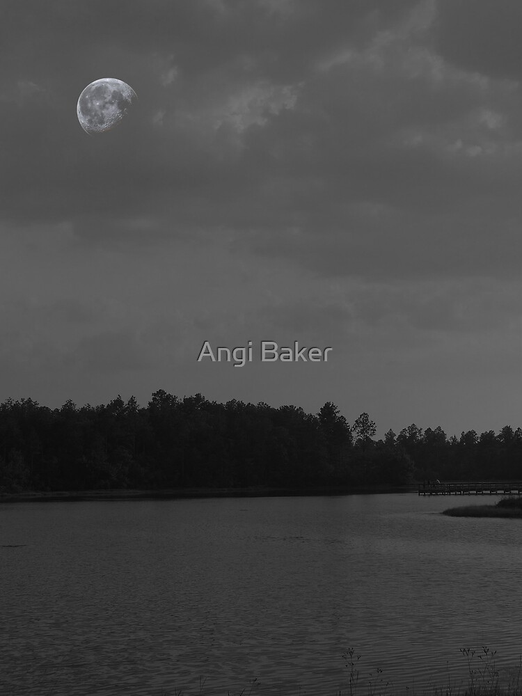At The End Of The Day by Angi Baker