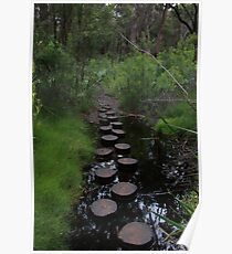 Stream crossing Poster
