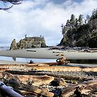 Ruby Beach by doubleheader