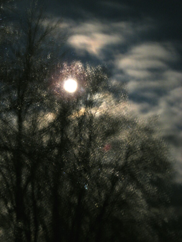 full moon over iced trees  by CaptiveLight77