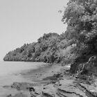 Lakeshore Gray by Bob Hardy
