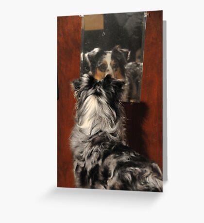 Mirror Mirror On The Wall.... Greeting Card