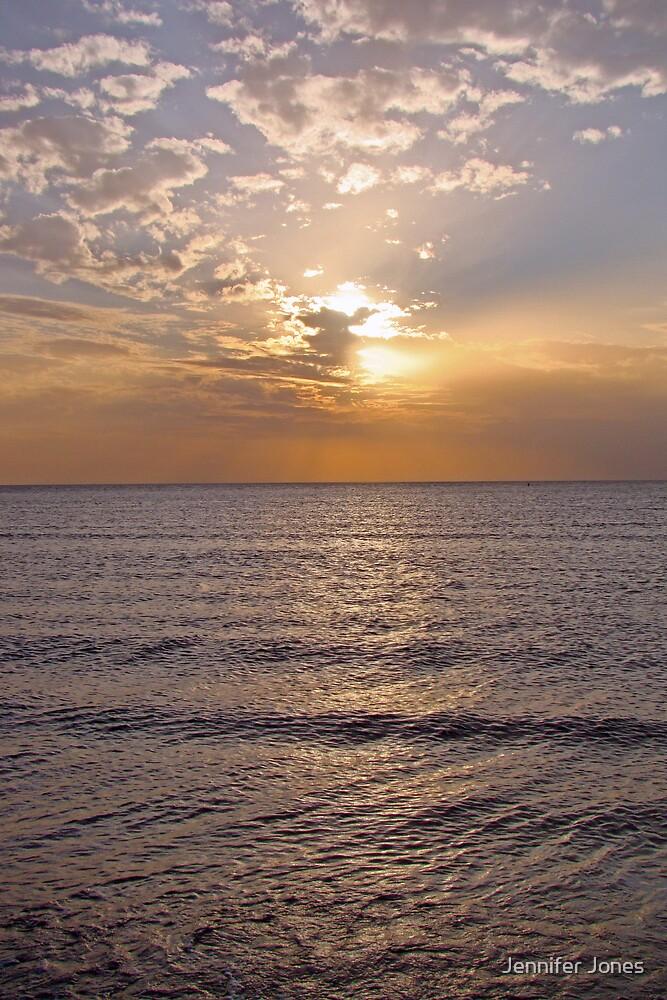 Honeymoon Island, Florida  by Jennifer Jones