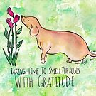 Taking Time To Smell The Roses With Gratitude by Shiloh Moore