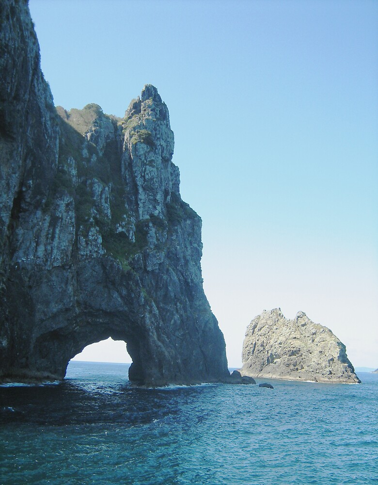 Hole in Rock, Bay of Islands New Zealand by Patricia  Knowles