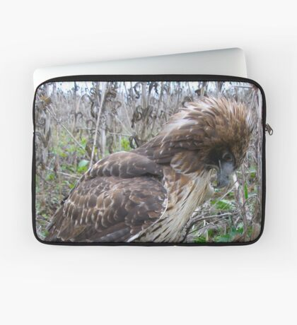 Red Tail Hawk and Pheasant  Laptop Sleeve