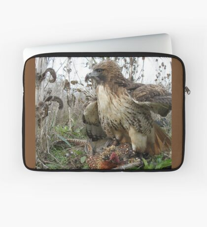 Red Tailed Hawk on a Pheasant Laptop Sleeve