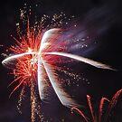 Starburst by Peter Hammer