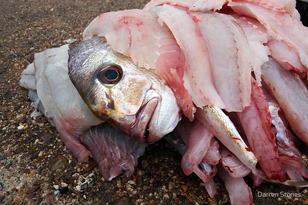 Filet O Fish by Darren Stones