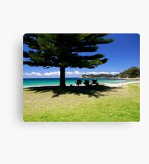 Seats in Shade Canvas Print