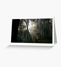 A Quiet Place Greeting Card