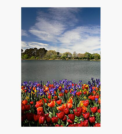Floriade Photographic Print
