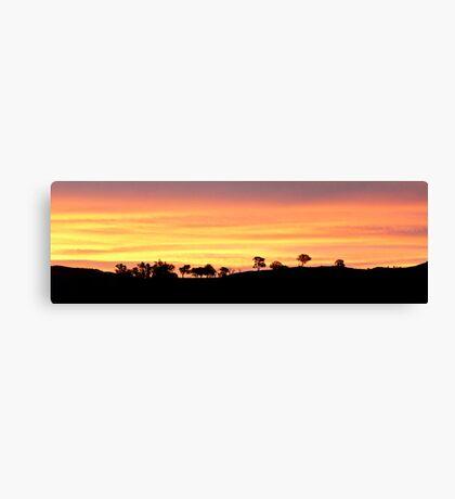 Painter's Canvas Canvas Print