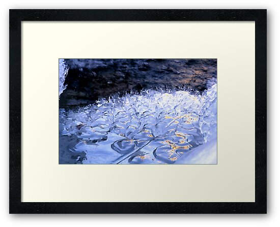 Ice Drops by Barbara  Brown
