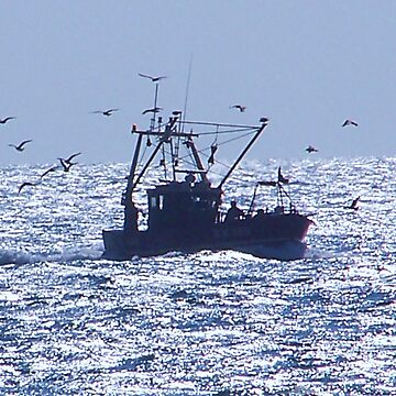 Fishing off Hastings by sjmphotos