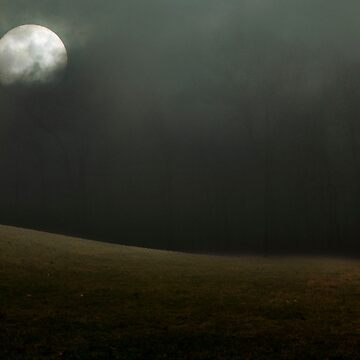 Moon over Field by reilly58