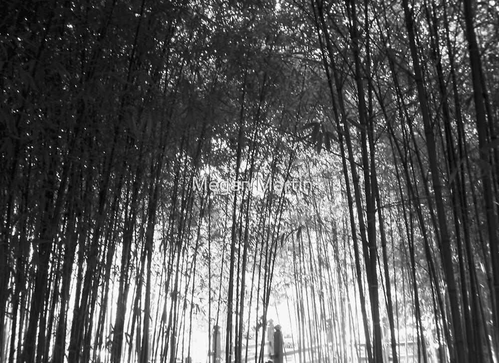 See Through Bamboo by Megan Martin