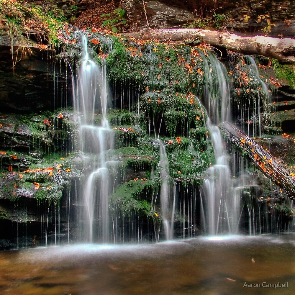Mossy Cascade by Aaron Campbell