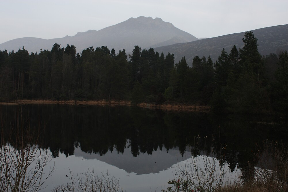 Silent Valley Reflections by Anna Leworthy
