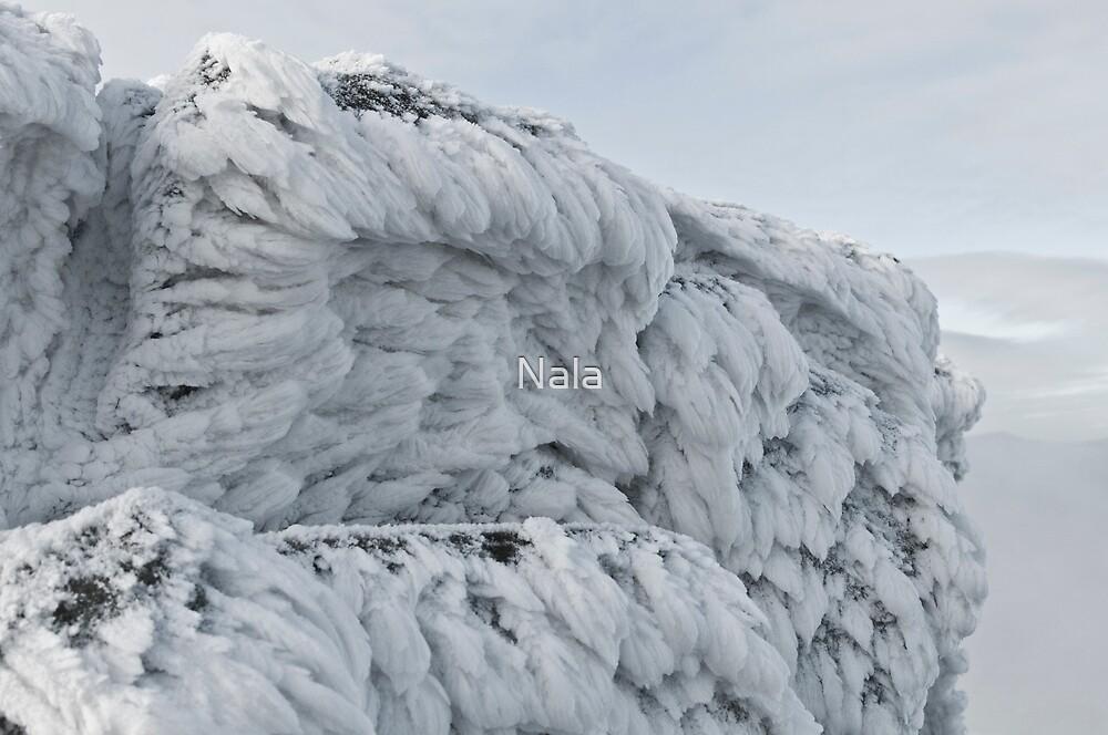 Mountain ice  by Nala