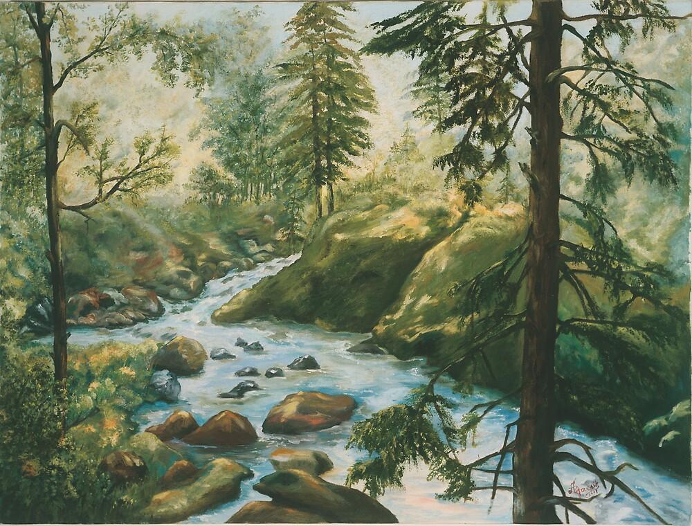 Adirondack Stream by Anna Grzesik