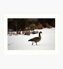 A Stroll In The Snow Art Print