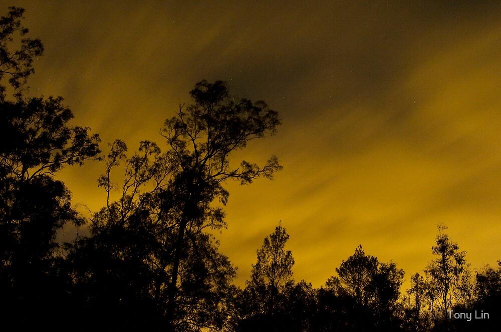 Sky of Golden Fire by Tony Lin