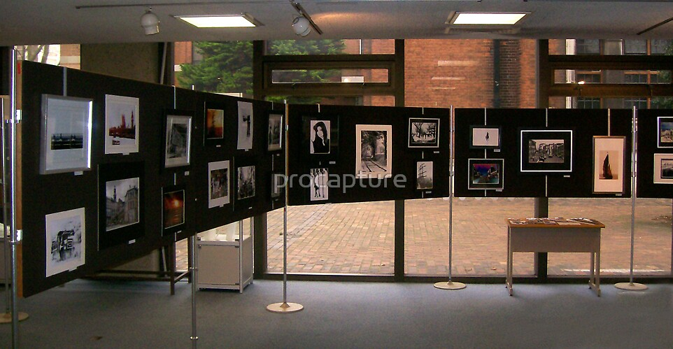 My exhibition by procapture