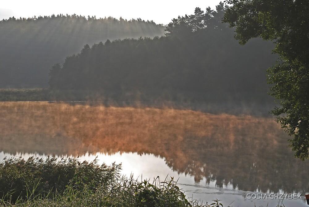 morning by the lake Gilwa -Poland by GOSIA GRZYBEK