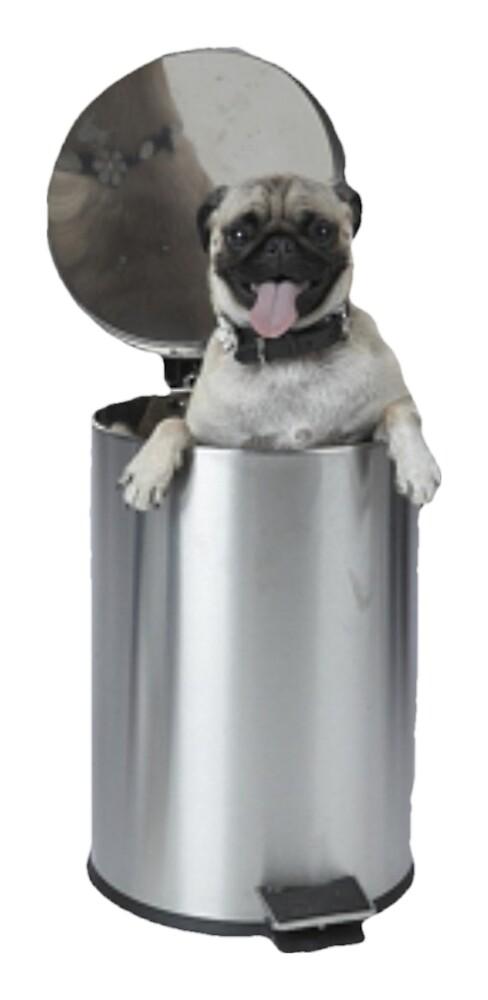 Trash Pug by Carlos & Luna