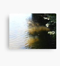 River Dance Canvas Print