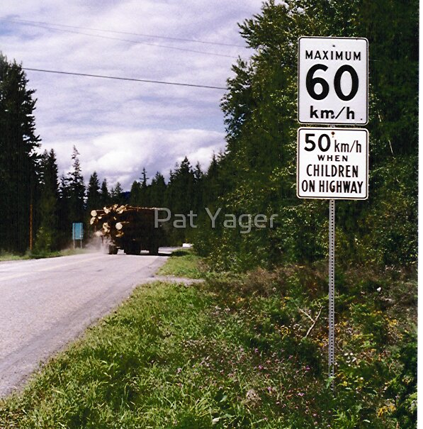Can you BELIEVE this sign?! by Pat Yager